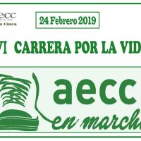 Carrera AECC