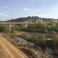 Río Cinca camino
